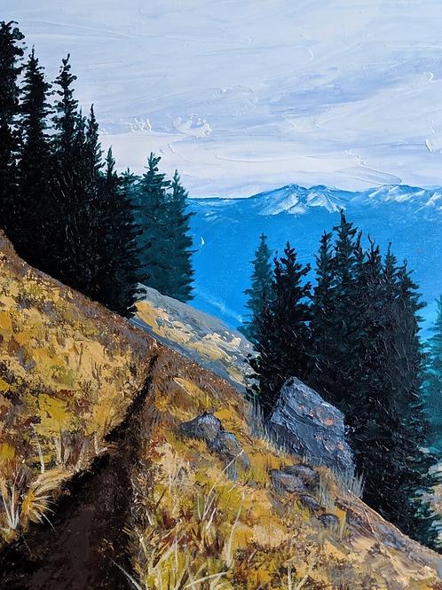 Switch Back Trail Canvas Print