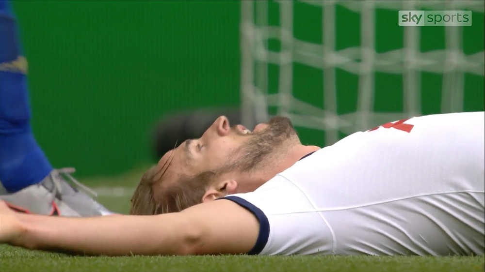 Kane celebrates after his goal against Leicester [Sky Sports Screen Shot]