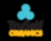 TSO-Logo.png