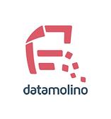 Datamolino.png