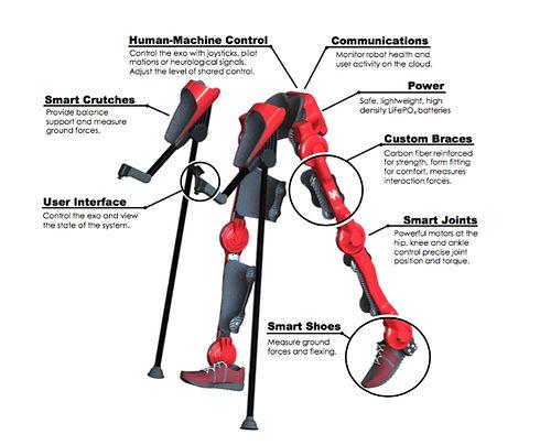Exoskeleton-Houston-Diagram.jpg