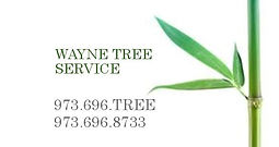 bus card - wayne tree service.jpg