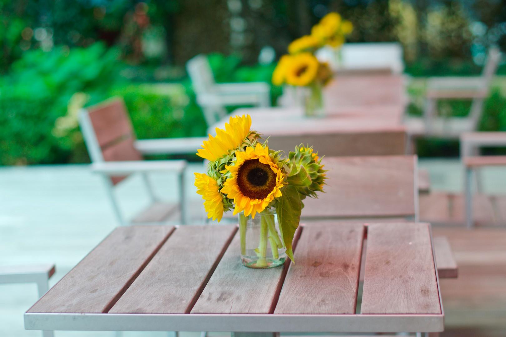 SunflowerDetail.jpg
