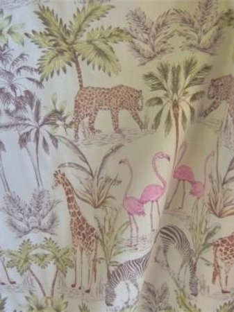 Coton safari