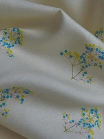 Coton muscari
