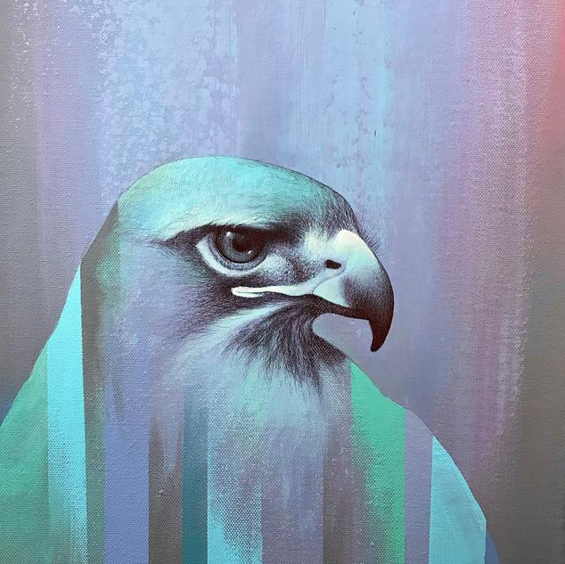 bird image ramona nordal med.jpg