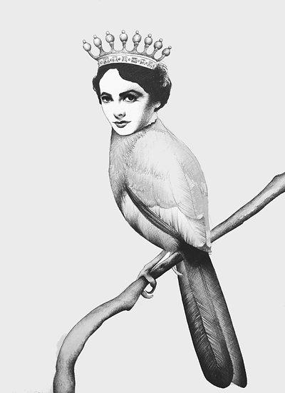 Elizabeth The Bird Fine Art Print
