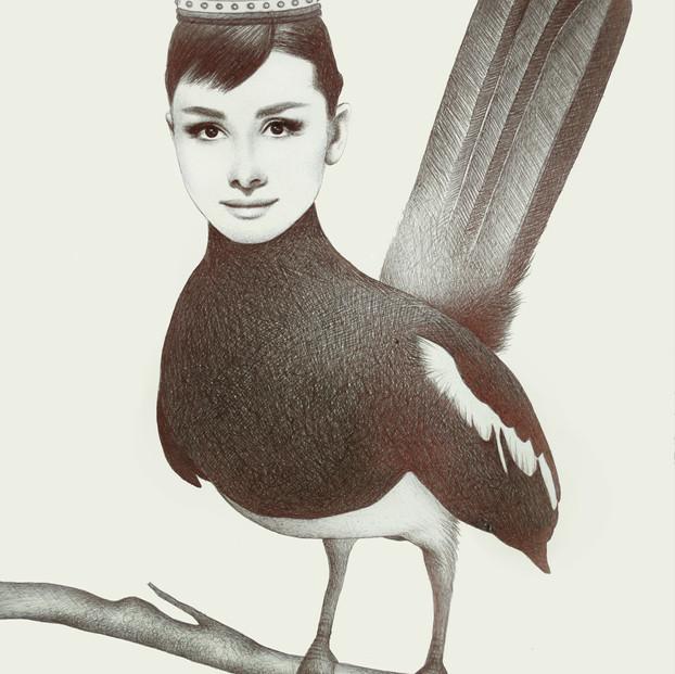 Audrey The Bird