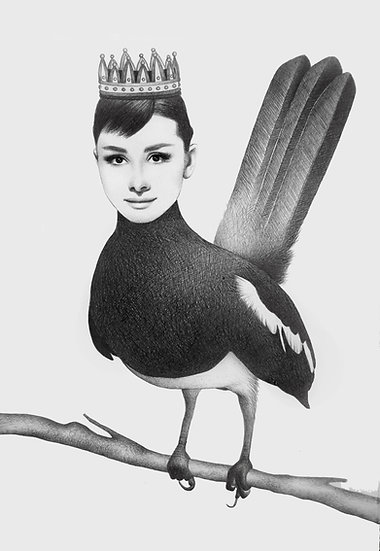 Audrey The Bird Fine Art Print