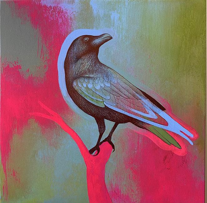 bird 32.jpg