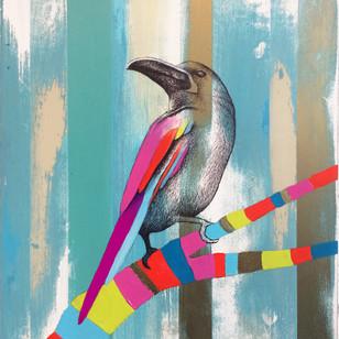 Bird Study #6