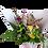 Thumbnail: Florists Choice Bouquet