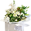Thumbnail: Florists Choice Carrier