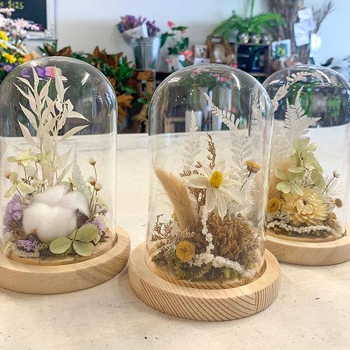 Mini dried domes