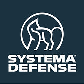 Systema-Defense-FB-logo-grey.jpg