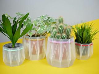 Engenheiros inventam potes que auto-regam plantas inspirados em origami, feitos com materiais 100% r