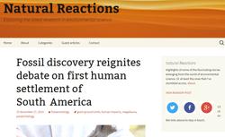 Natural Reactions | Blog