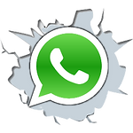 whatsapp_PNG23 (1).png