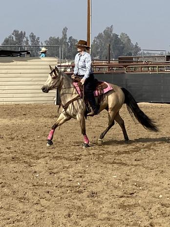 2016 buckskin filly aqha quarter horse M