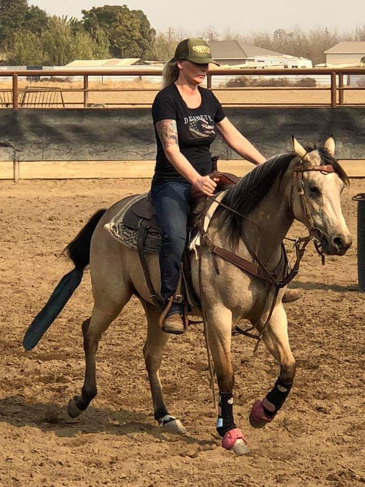 2016 buckskin filly