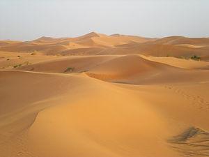 sahara desert, morocco, sand dunes