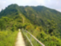 wilson trail, hong kong, hiking, mountains, scenery