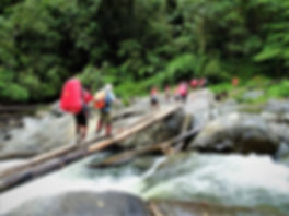 kokoda, trail, trak, papua new guinea, forest, jungle, mountain, hike, trek, river, crossing
