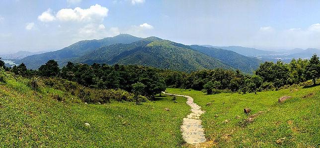 hiking, trail, hong kong, mountain, view, maclehose, scenery, grassy hill