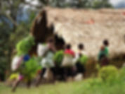 kokoda, track, trail, papua new guinea, hike, trek, mountain, jungle, villagers, naduri