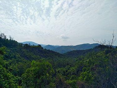 hong kong, trail, mountain, hiking, view, tai lam, new territories