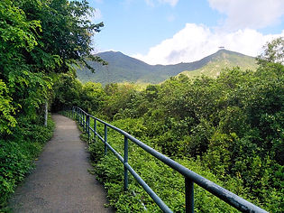 hong kong, trail, mountain, hiking, view, lantau, tung o ancient walk