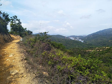 hong kong, trail, mountain, hiking, view, tai lam