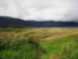 kokoda, track, trail, papua new guinea, hike, trek, mountain, jungle, myola