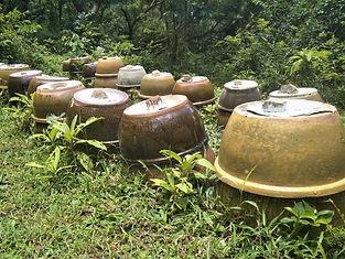 hong kong, lantau island, lantau trail, hiking, mountains, view, urns, graves