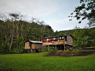 kokoda trail, track, papua new guinea, hike, trek, jungle, mountain, efogi