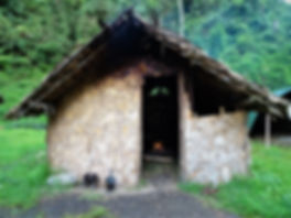 kokoda, trail, trak, papua new guinea, forest, jungle, mountain, hike, trek, templeton's crossing 2, hut