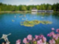 Heviz Gyogyto, thermal lake, hungary
