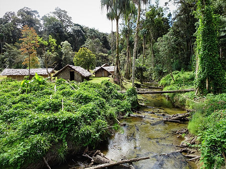 kokoda, track, trail, papua new guinea, hike, trek, mountain, jungle, digger's rest