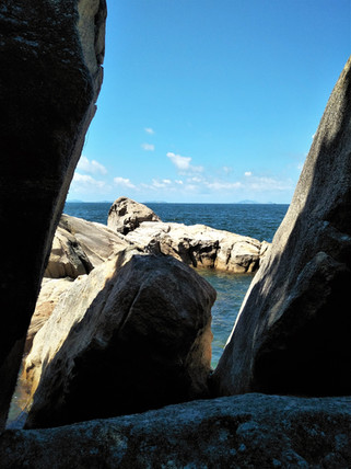 Peering through the rocks