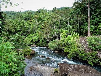 kokoda trail, track, papua new guinea, mountain, jungle, trek, hike, goldie river