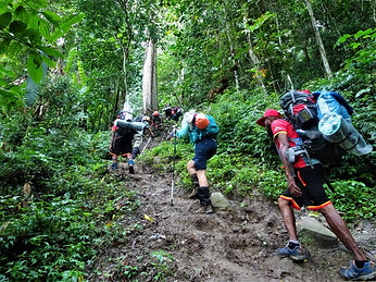 kokoda, trail, track, papua new guinea, hike, trek