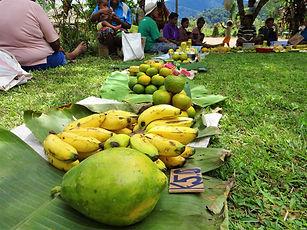 kokoda trail, track, papua new guinea, hike, trek, jungle, mountain, fruit, market, menari