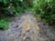 kokoda, track, trail, papua new guinea, hike, trek, mountain, jungle, mud