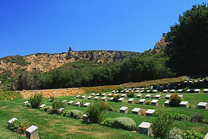 gallipoli, turkey, cemetery