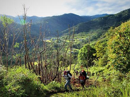 kokoda trail, track, papua new guinea, hike, trek, jungle, mountain, view
