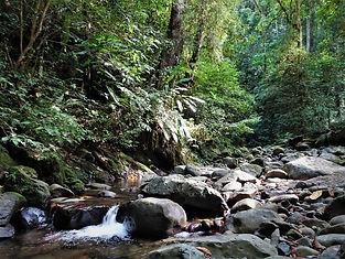 kokoda trail, track, papua new guinea, mountain, jungle, trek, hike, river, waterfall