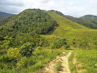 hong kong, trail, mountain