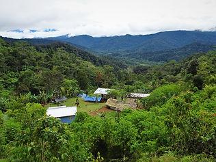 kokoda trail, track, papua new guinea, hike, trek, mountain, jungle, nauro, view