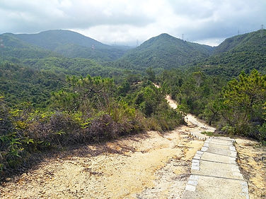 hong kong, trail, mountain, hiking, view, tai lam chung