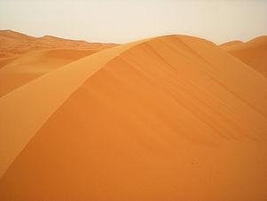 Sahara (14)_edited.jpg